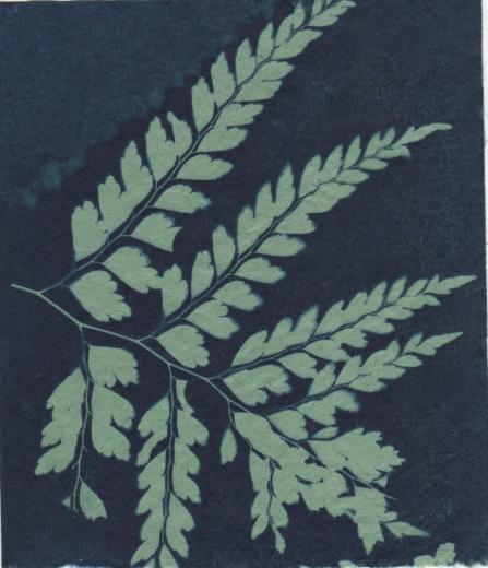 Bush Trinkets - Green Leaves