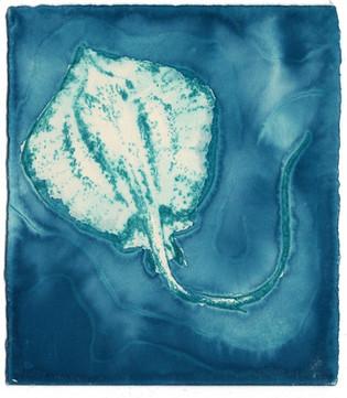 Ocean Treasures - Stingray