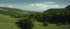 Tchang 25 (paisaje verde).jpg
