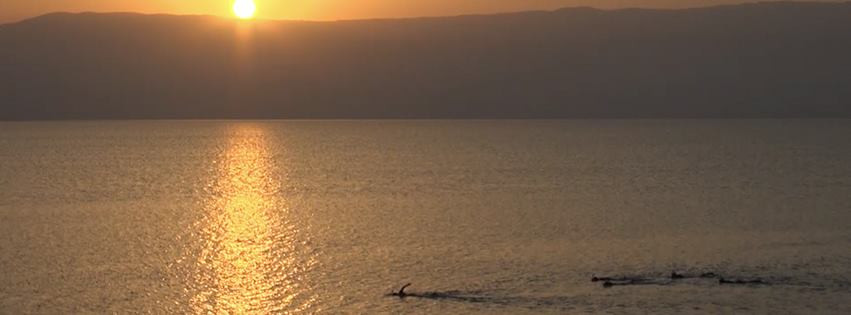 Dead Sea Swim Israel