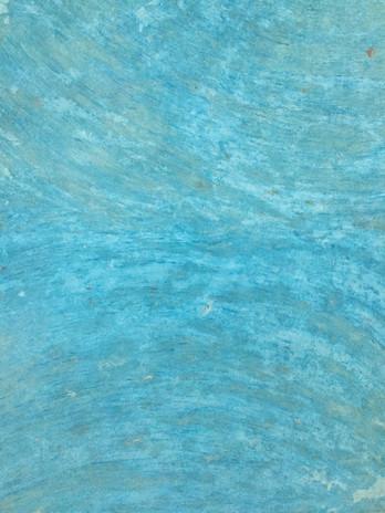 le pas aquatique