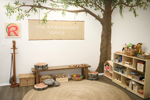 Play Area in the Playroom