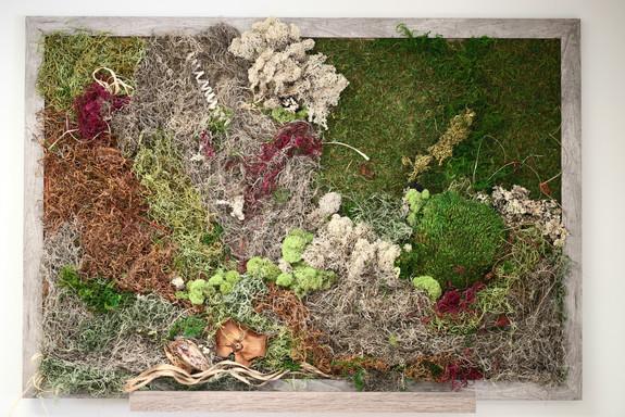 Living Moss Wall Art by Elena Melamed