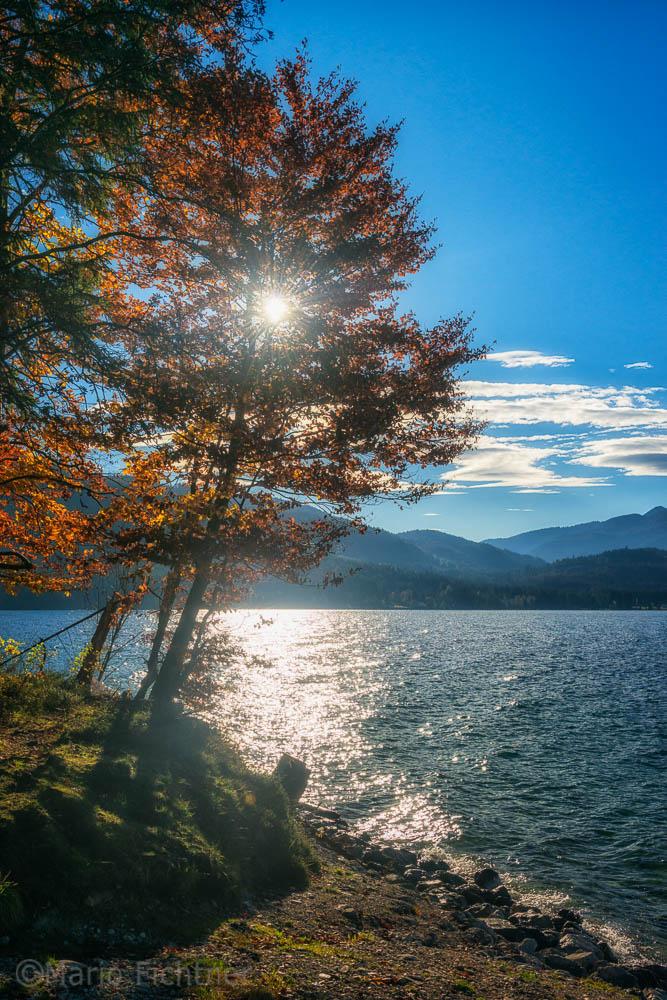Autumn 0001