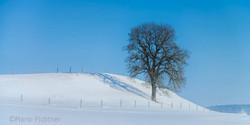 Landscape 898417