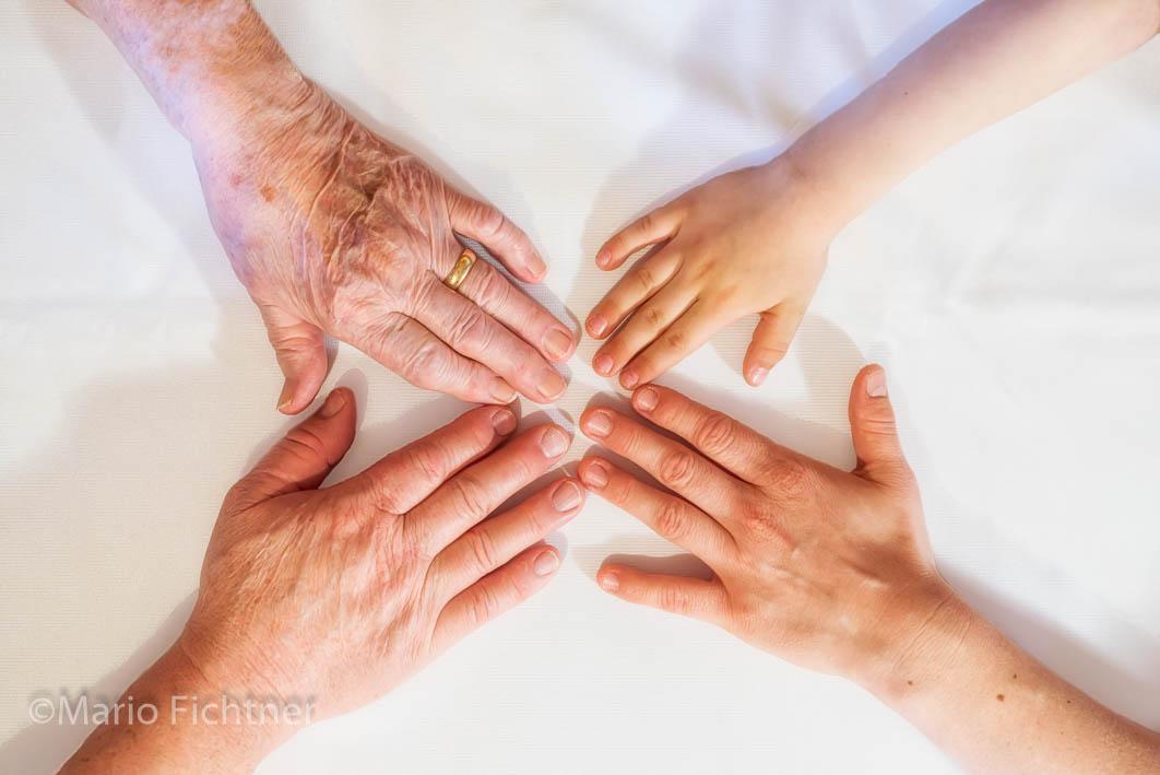 Hands 501318