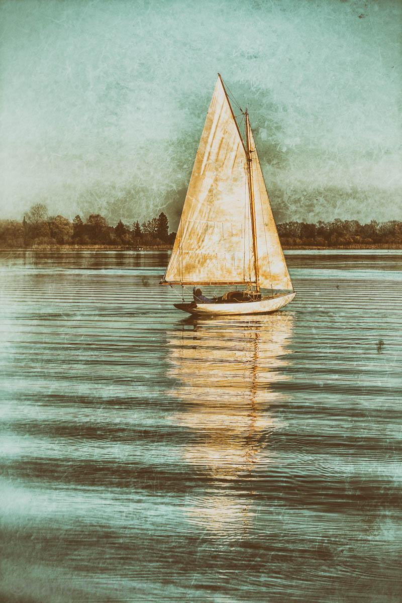 Last sail 3133