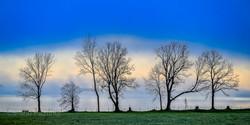Landscape 896920