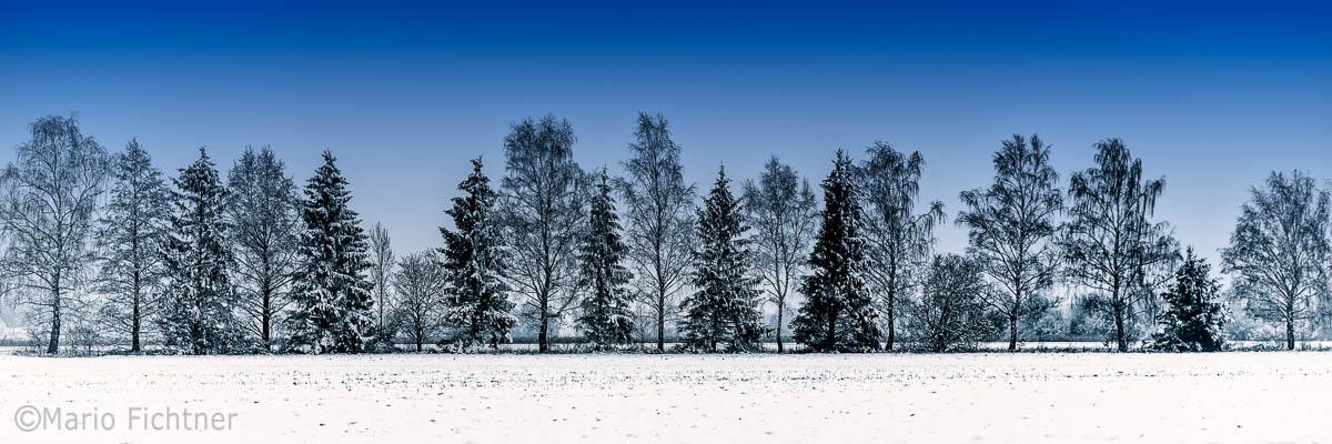 Landscape 3778