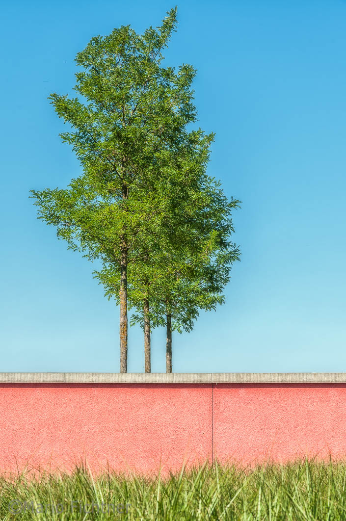 Red wall 325810