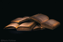 Literature 7164