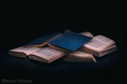 Literature 7172