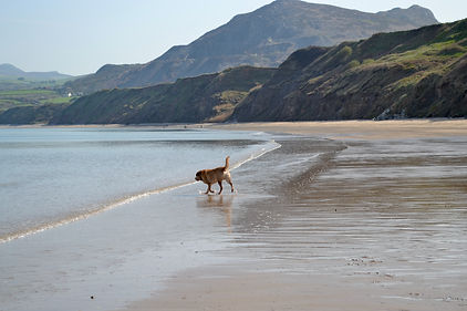 Nefyn Beach.jpeg
