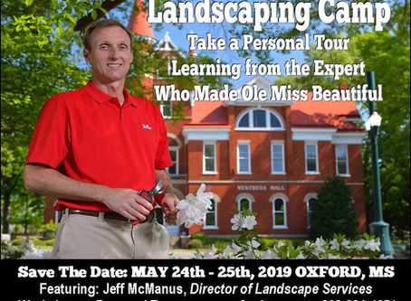 Ole Miss Beauty: A Chance to Learn from the Best