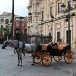 calles de Sevilla (22).JPG