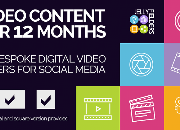 12 months of social media video content