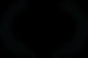 zoom238x159z84000cw284_2x-2.png