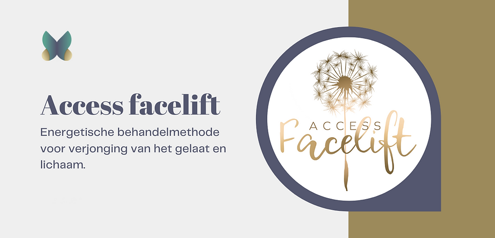 facelift access.png