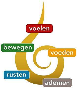 spiraal 5 elementen.jpg