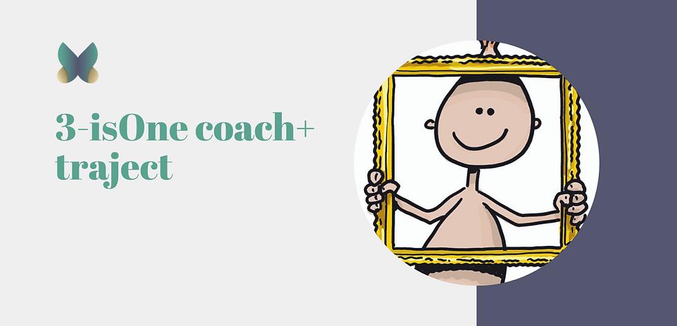 coach+ traject.png
