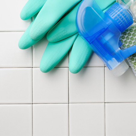 Live Well Corner: Is Your Home Clean and Toxin Free?