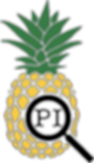 The Pineapple Investigations logo.  A pineapple with a magnifying glass