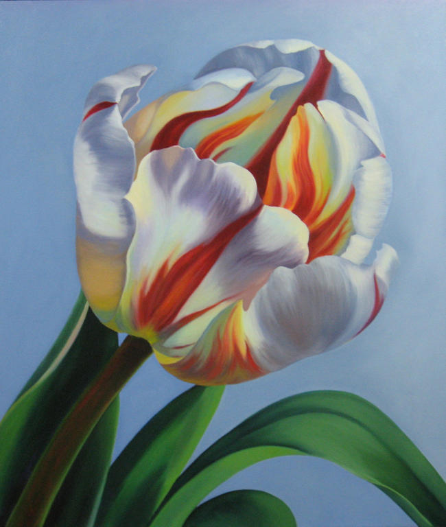 Candy Cane Tulip painting