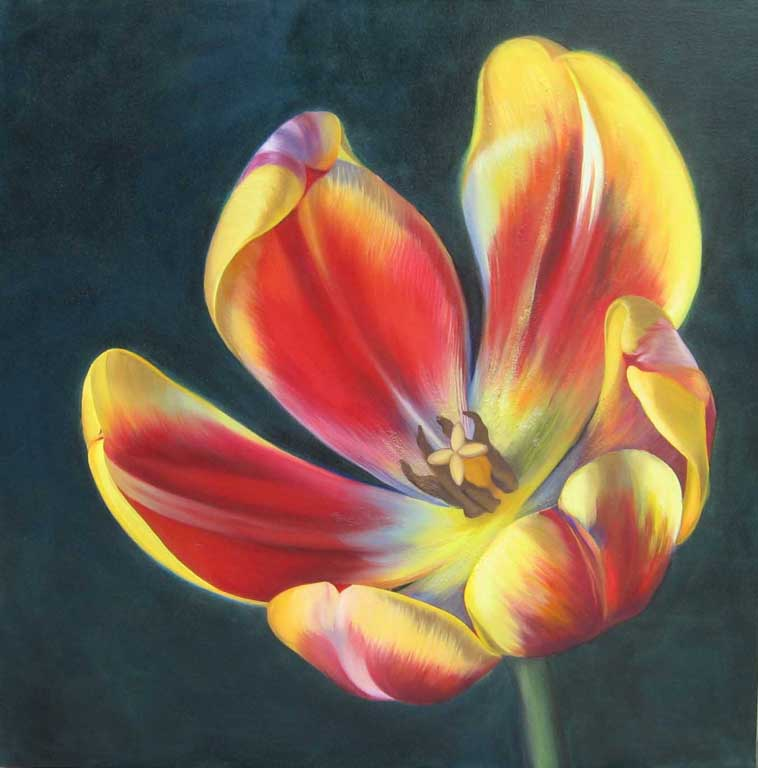 Red Yellow Tulip flower painting