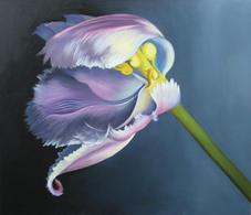 Waving Pink Tulip