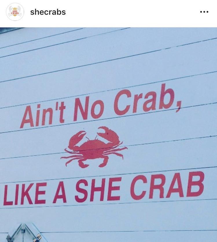 NSC Annual Crab Feast 18