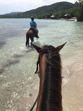 Horseback Riding in Montego Bay