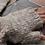 Thumbnail: Fingerless handspun hand knitted mittens with frill
