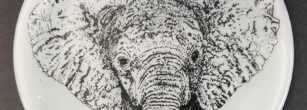 5_Pippa_Stacey_Baby_Elephant_Glass_plate