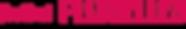 logo_plurielles.png