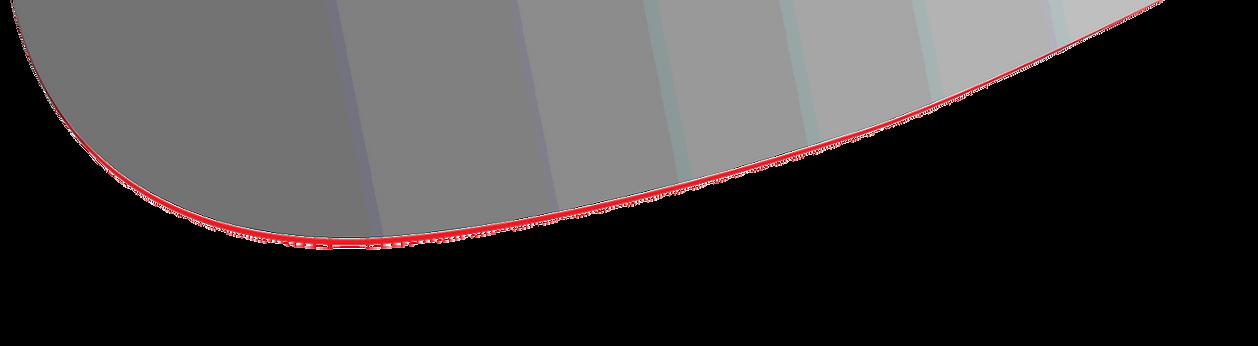 PLM logo swing
