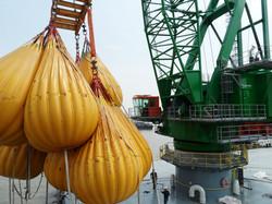 PLM Heavy Lift Crane