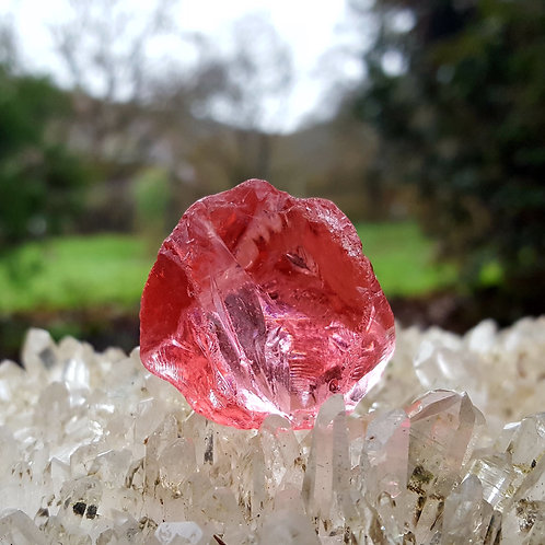 HGW Raspberry Pink 22 gram A