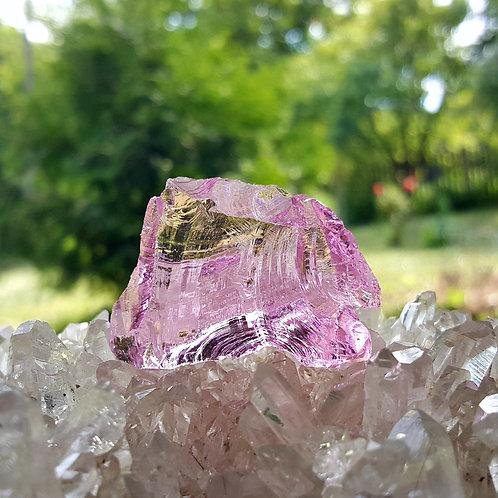 HGW Pink Andara 26 gram