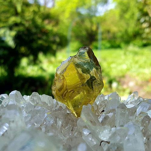 Terra Olive Andara 16 gram