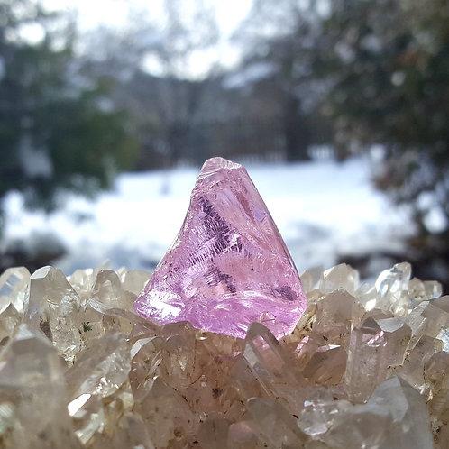 HGW Pink Andara 23 gram