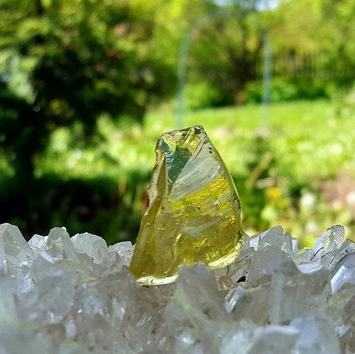 Terra Olive Andara 10 gram