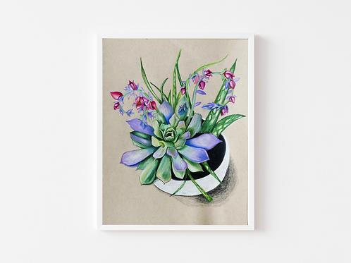 Flowering Succulent Print