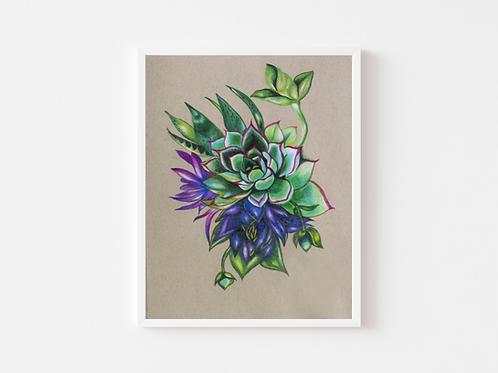 Succulent Cluster Print