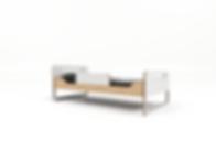מיטת רוני דגם חדש עם מיטת חבר .323.png