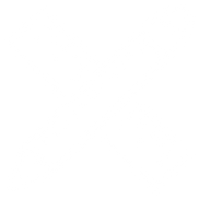 Prototype Icon.png