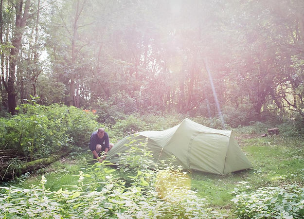 Tent pitched in woodland glad