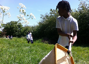Child using a sweep net for outdoor learning session
