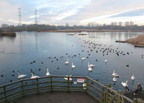 Seventy Acres Lake in River Lee Country Park
