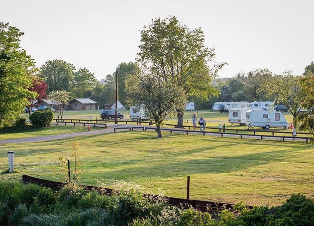 Main touring field at Lee Valley Caravan Park