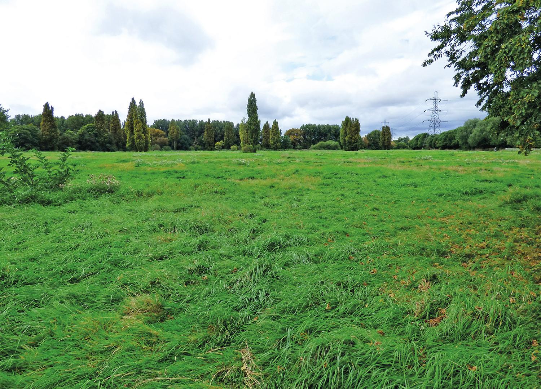 WaterWorks Field